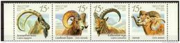 2013 Strip Russia Rußland Rusland Russie Rusia Fnimals Fauna Of Russia. Wild Goats And Rams Mi 1899-1902 MNH ** - 1992-.... Federation
