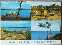 LES ÎLES CHAUSEY (50).LOT DE 4 CARTES. ANNEES 75-80 .TBE. - Granville