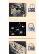 Ratafià Rapa Andorno Biella Convegno Filatelico 1951 Italia Al Lavoro Doc.220 - Biella