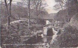 Angleterre        556        Newcastle On Tyne.The Waterfall , Jesmond Dene - Newcastle-upon-Tyne