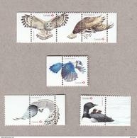 OWL, FALCON, OSPREY [FISH EAGLE / HAWK],birds Of Prey, BLUE JAY, LOON Set  5 Souvenir Sheet Stamps Birds Of Canada 2017 - Eagles & Birds Of Prey