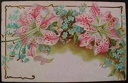 Cpa BELLES FLEURS DE LYS TIGRE Sur LIT De MYOSOTIS 1905 Marcus Ward's FLOWERS LILIES  Recto Verso  Prix Fixe - Fleurs