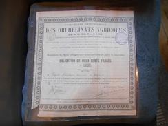 """Obligation """"Cie Immobilière Des Orphelinats Agricoles De N.D. Du Calvaire"""" Hérault 1889 Siege Montpellier - Banque & Assurance"""
