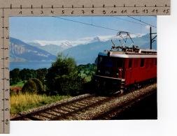 BLS Bern–Lötschberg–Simplon - Die Lötschbergbahn Am Thunersee - Treinen