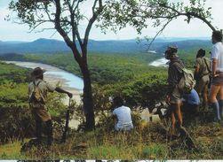 Wilderness Trail - Zululand - Natal - - Sud Africa