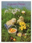 PAQUES-- Poussins , Oeufs  , Fleurs - Pâques