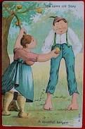 Cpa HUMOUR COUPLE , FEMME OFFRANT Une POMME , MEME VIEILLE HISTOIRE ADAM & EVE , 1907 THE SAME OLD STORY Comic - Humour