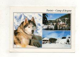 (06) TURINI -CAMP D'ARGENS - France