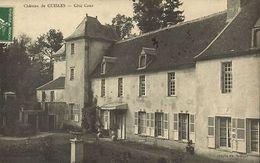 CPA Chateau De Cuisles - Cote Cour (109932) - France