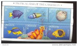 GRENADA     2476  MINT NEVER HINGED MINI SHEET OF FISH-MARINE LIFE  #  M-297-1   ( - Fische