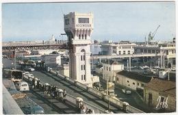 Alger: PEUGEOT 403 FAMILIALE, RENAULT GOELETTE, CITROËN TUBE HY, AUTOBUS - 'Ascenseur' , Le Port - (1967) - (Algerie) - Toerisme