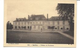 LOIRET-SANDILLON Château De Puchesse-MO - France