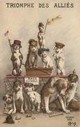 TRIOMPHE DES ALLIES - Carte Humoristique,chiens Militaires,race Nuisible. - Patriotiques