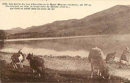 - Ardeche -ref- 605 - Lac D Issarles - Bords Du Lac - Petit Plan Laveuses - Laveuse - Chevre - Chevres - Goat - Goats - - France