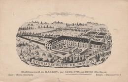 52 - DAMMARTIN SUR MEUSE - Etablissement De Malroy - France