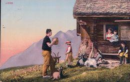 Scène Alpestre, Armaillis Et Bétail, Chèvres (4163) - Elevage