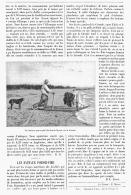 LES BATEAUX POUSSE-PIED Du PORT-DE-NEYRAN En  GIRONDE  1904 - Aquitaine