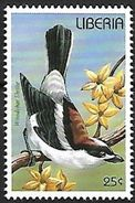 Liberia MNH 1996 - Woodchat Shrike ( Lanius Senator) F157 - Zangvogels