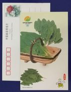 Spinacia Oleracea,CN 01 China Int′l Fruit & Vegetable Fair 2001 Advertising Postal Stationery Card - Legumbres