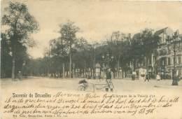 Souvenir De BRUXELLES - L'Avenue De La Toison D'or - Lanen, Boulevards