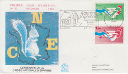 Enveloppe  FDC  Flamme   1er   Jour     CAISSE   NATIONALE   D' EPARGNE     CHAUNY   1981 - FDC