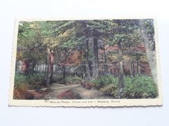 Mont-de-l'Enclus Chemin Sous Bois - KLUISBERG Bosweg ( Patt. Losa ) Anno 1953 ( Zie Foto Details ) !! - Heuvelland