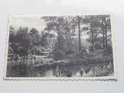 Aulne L'Ile ( 4818 MOSA ) Anno 1956 ( Zie Foto Details ) !! - Thuin