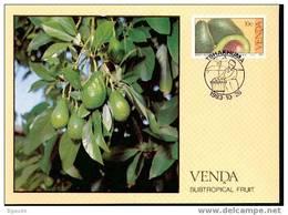 VENDA   CARTE MAXIMUM NUM.YVERT 82 FRUITS SUBTROPICAUX - Venda