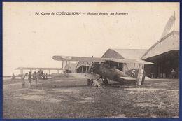 56 GUER COETQUIDAN Camp, Avions Devant Les Hangars ; Chien - Animée - Guer Coetquidan