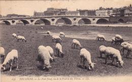 CPA (31) TOULOUSE Le Pont Neuf Vu De La Prairie Des Filtres Animaux Brebis Ovins (2 Scans) - Toulouse