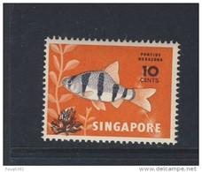 SINGAPORE  POISSONS 1981 YVERT N°368 NEUF MNH** - Singapour (1959-...)
