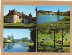 61 LA MADELEINE BOUVET -MULTIVUES  CPM,le Château De SAUSSAY ,l'Etang,Le Moulin Renault,Paturage 1980 - France
