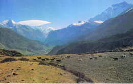 NEPAL - COLOUR PICTURE POST CARD - PEAKS OF HIMALAYA - MARSHYANGDI VALLEY - TRAVEL / TOURISM / MOUNTAINEERING - Nepal