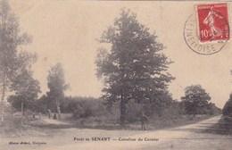 FORET DE SENART  CARREFOUR DU CORMIER (dil327) - France
