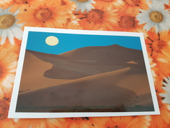 Mongolia. Singing Sands - Modern Postcard - Mongolie