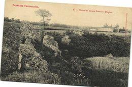 Paysages Toulousains Ruines Du Cirque Romain De Blagnac Labouche Recto Verso - France