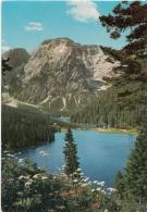 Montagne Laghetto Belvedere - Cartoline