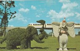 Disney > Disneyworld Dumbo Meets A Topiary Cousin Early Chrome - Disneyworld