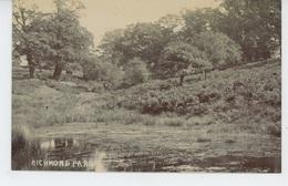 ROYAUME UNI - ENGLAND - RICHMOND Park - Surrey