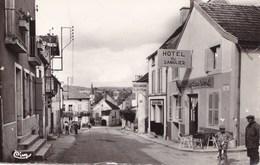 FLEUREY SUR OUCHE/HOTEL DU SANGLIER  GRANDE RUE (dil327) - France