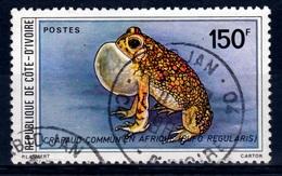Ivory Coast, African Common Toad (Bufo Regularis), 1980, VFU - Ivory Coast (1960-...)