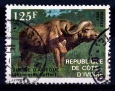 Ivory Coast, African Buffalo (Syncerus Caffer), 1983, VFU - Ivory Coast (1960-...)
