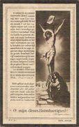 DP. FRANCISCUS DEHILLE ° MANNEKENSVERE 1856 - + STEENE (ST JAN) 1929 - Religione & Esoterismo