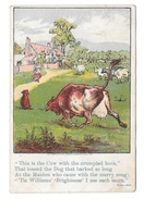 Victorian Trade Card D.W. Williams Soaps Cow W Crumpled Horn And Dog Glastonbury CT - Advertising