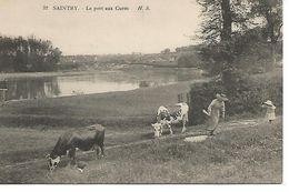91   Saintry     Le Port Aux Curés - Other Municipalities