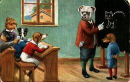 Chien Illustré 152 - Humanisé Classe Tableau Noir - Cani