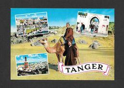 TANGER - MAROC - CHAMEAU - MULTIVUES - PAR COLLINS GLOBAL - Tanger