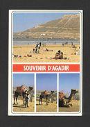 AGADIR - MAROC - SOUVENIR D'AGADIR - MULTIVUES - VUE SUR LA PLAGE - DIVERS ASPECTS - MAGNIFIQUE TIMBRE DU MAROC - Tanger