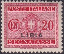 Italy-Colonies And Territories-Libya PD 14 1934 Postage Due,20c Carmine,mint Hinged - Libya