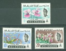 Malaya - Selangor: 1970   Flowers   SG143-145   1c, 10c And 20c   [Wmk Sideways]     MNH - Selangor